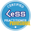 Provisional Certified LeSS Practitioner: Principles to Practices
