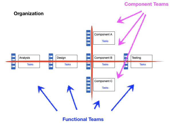 Functional and Component Teams